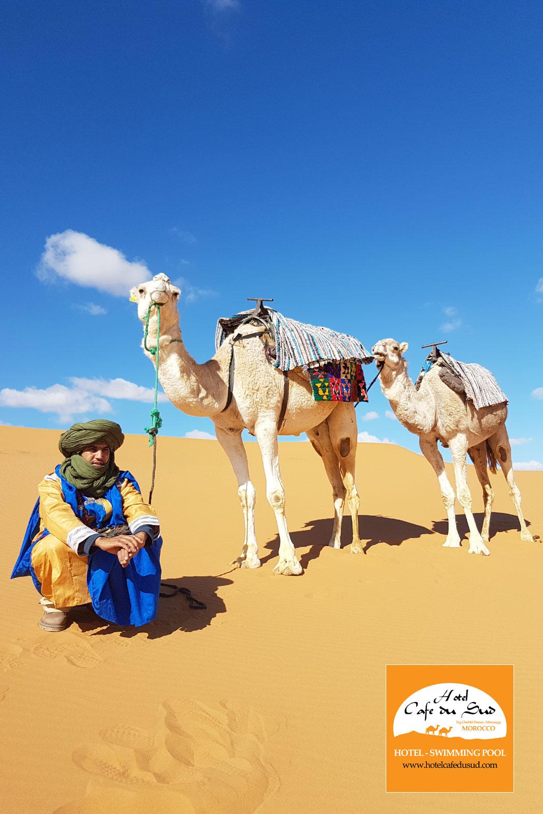 كامل للرحلات المغربية