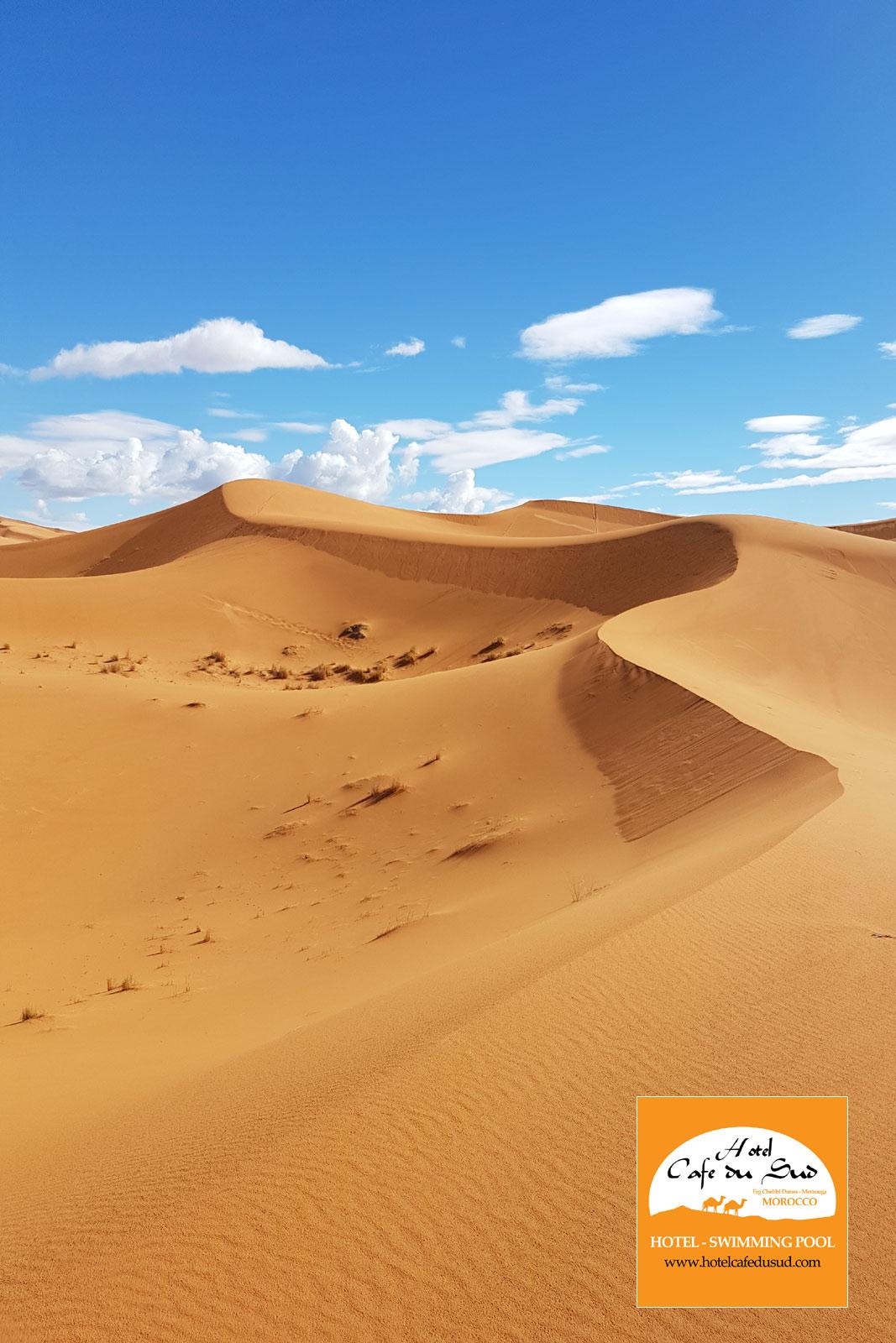 ترافيل ديزرت المغرب